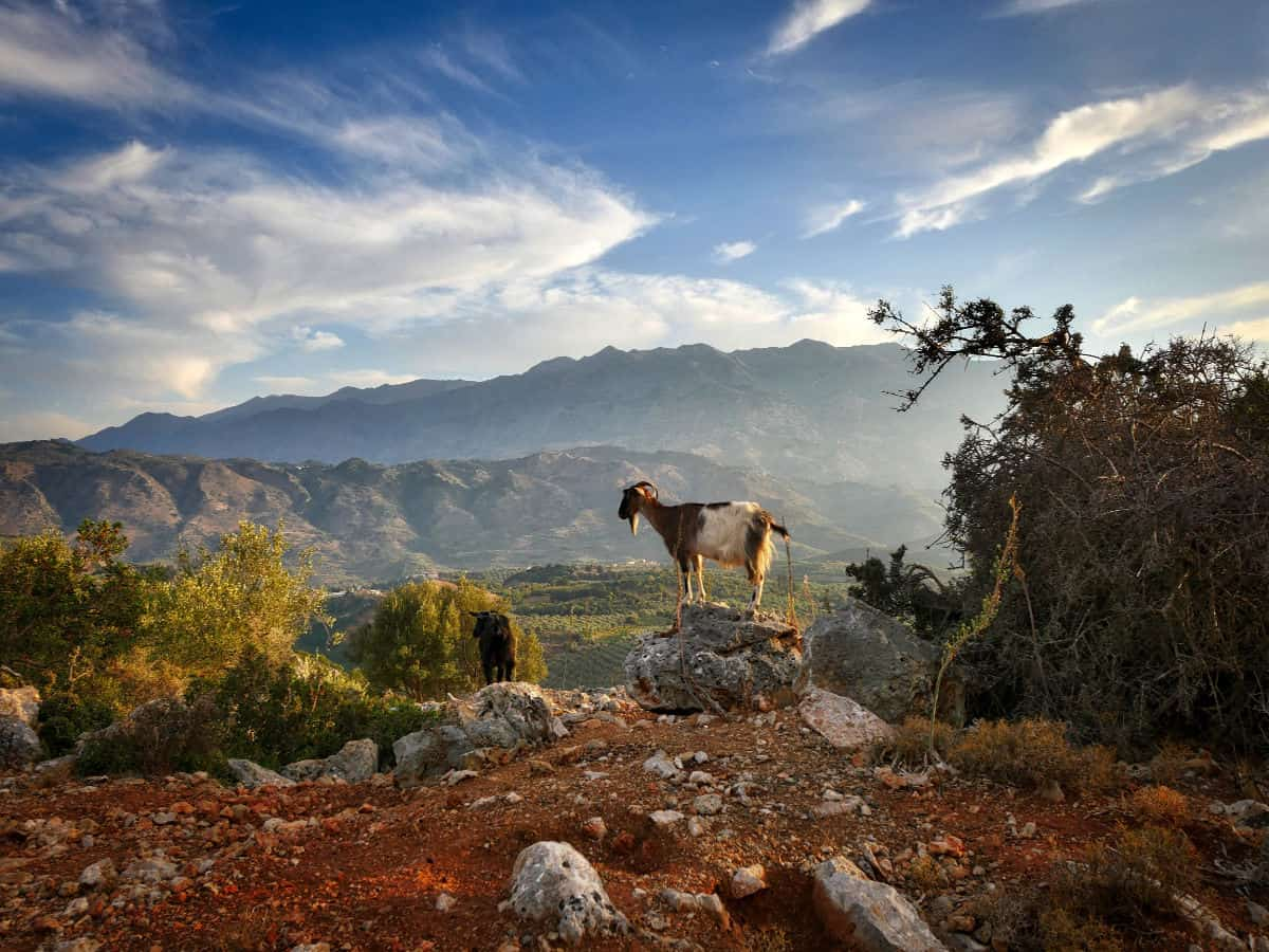 crete-white-mountains