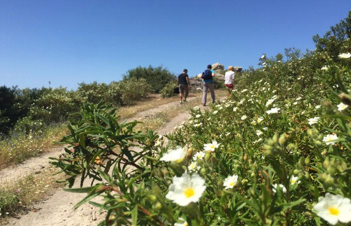 aegean-outdoors-halkidiki-hiking-tour