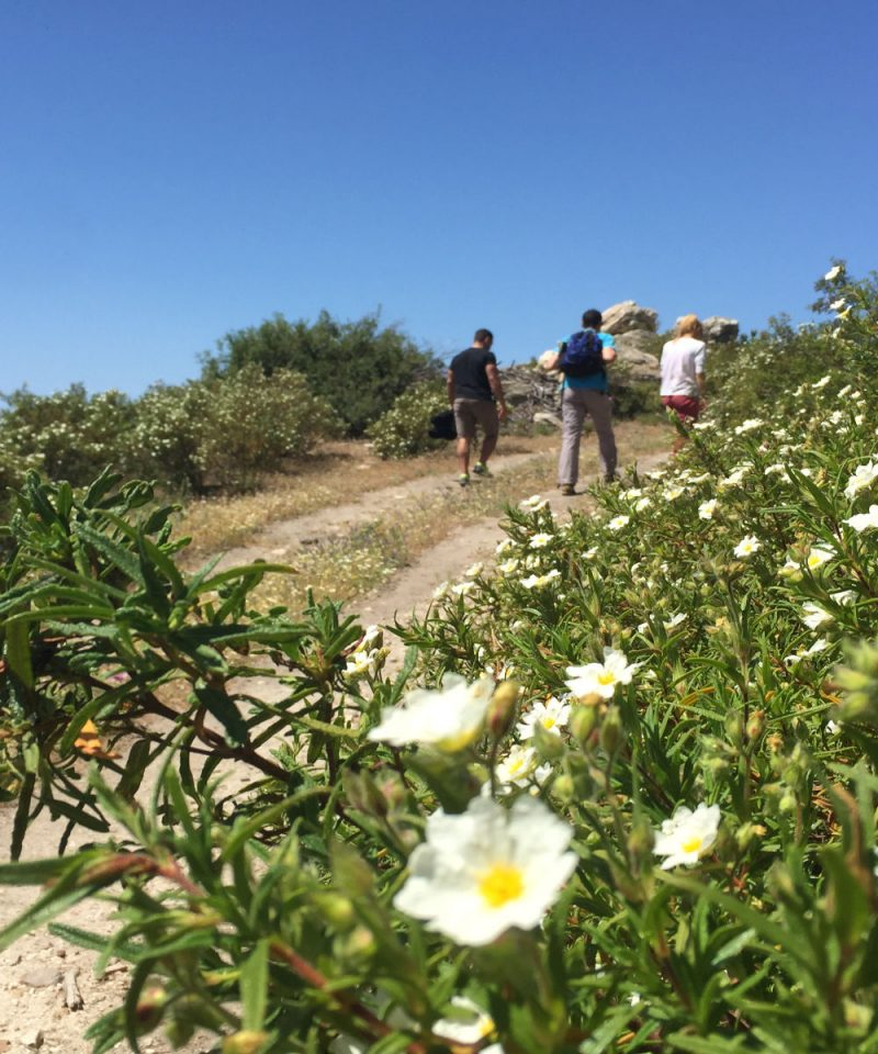 aegean-outdoors-halkidiki-hiking-tour