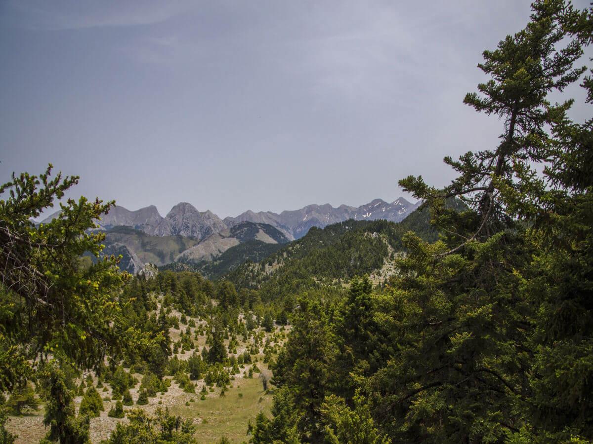 Kalamata Hiking Tour